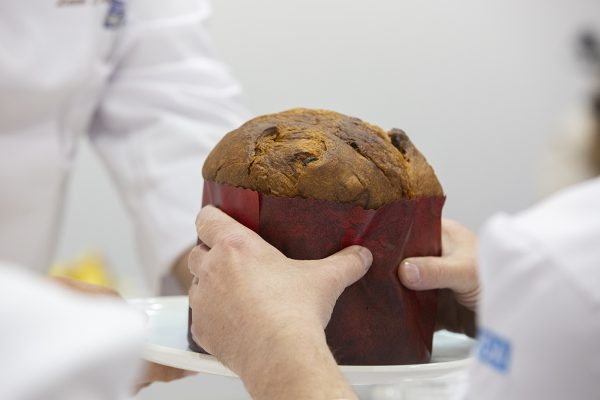 Registrations are open for the America selection for the Panettone World Cup